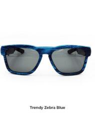 zebra-blu1 copia