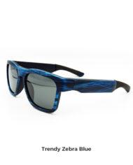 zebra-blu2 copia