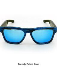 zebra-blu3 copia