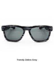 zebra-grey1 copia