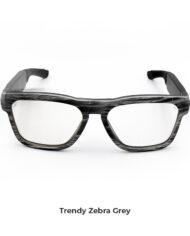 zebra-grey3 copia